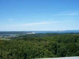 Blick vom Aussichtsturm Jagdschloß