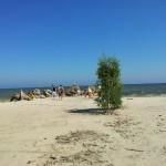Richtung Kolka zur Bucht von Riga (28. Juli)