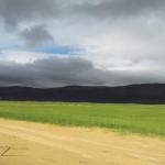 Die Westfjorde (16. Juli)