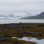 Abschied von den Westfjorden (18. Juli)