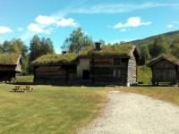 Am Bygdalsfjorden auf Elchsafari (30. Juni)