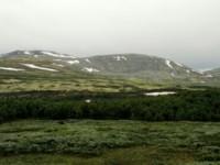 Über die Landschaftsroute Rondane nach Lillehammer (16. Juli)
